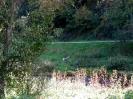 Zinnenschuss 2004_16
